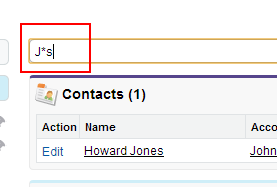Salesforce Advanced Search using Wildcards, Boolean