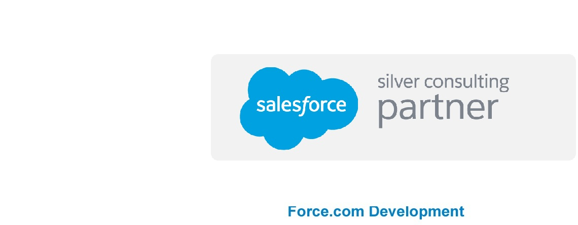 Force.com Development Services