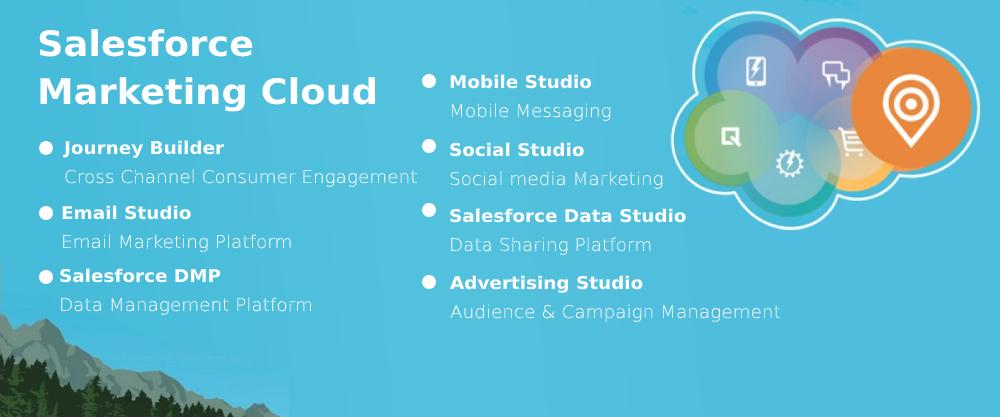 SAlesdforce Marketing Cloud Services